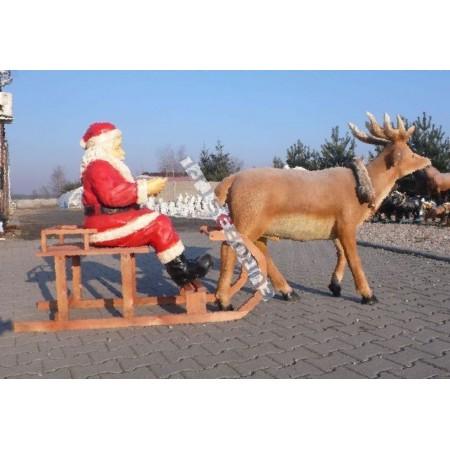 Mikołaj na saniach z reniferem